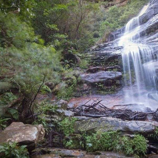 Must see attraction in Blue Mountains tours from Sydney