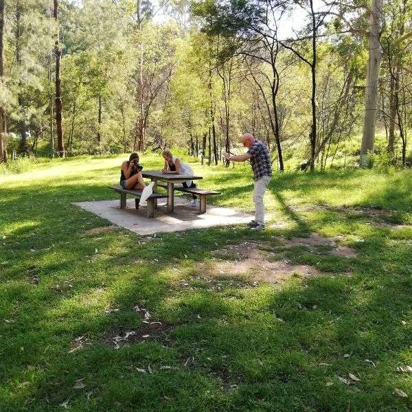 blue mountains private tours